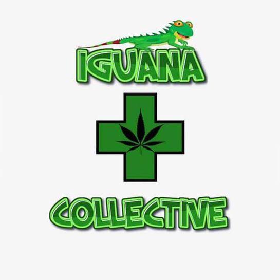 Iguana Collective